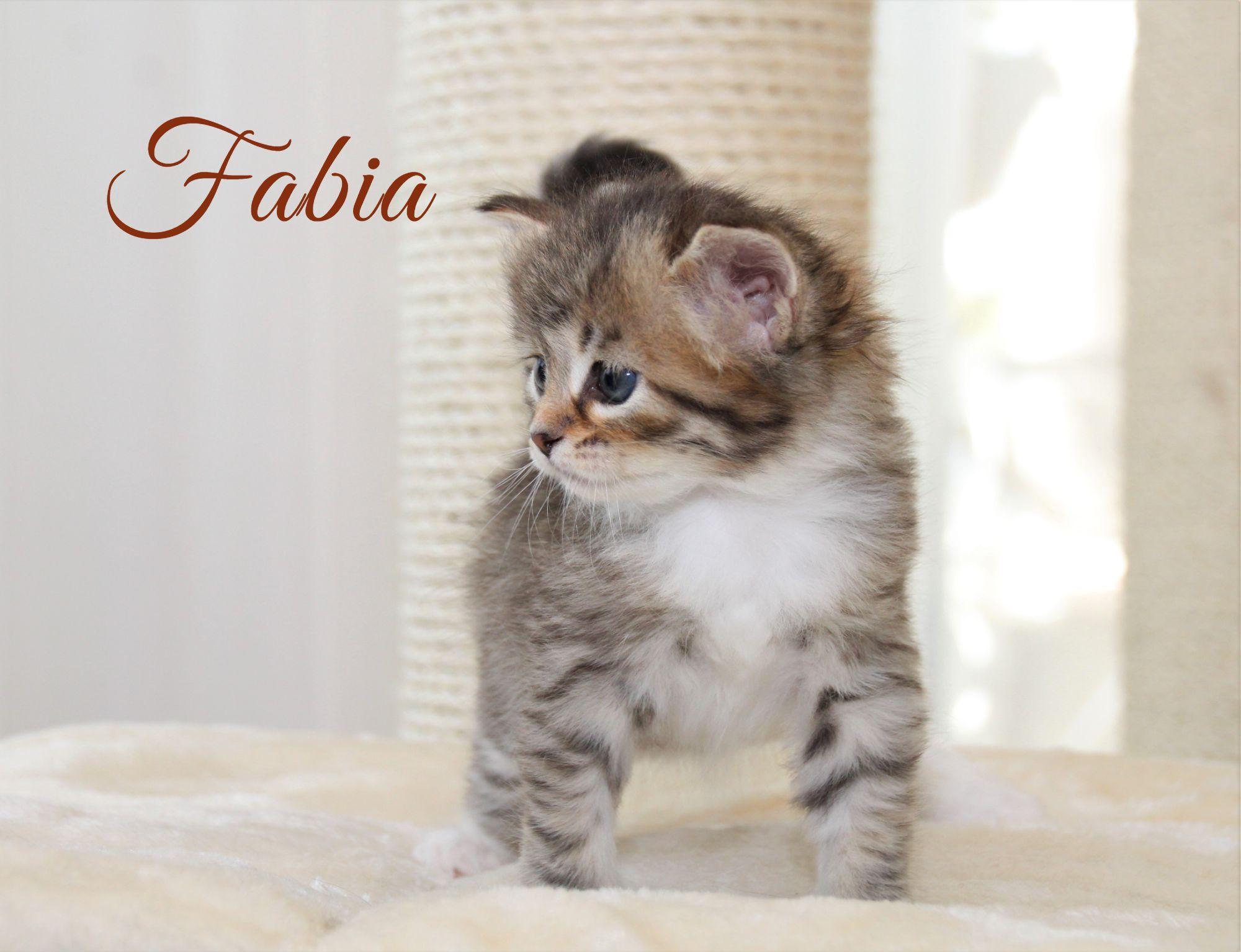 Fabia, 1 Monat alt