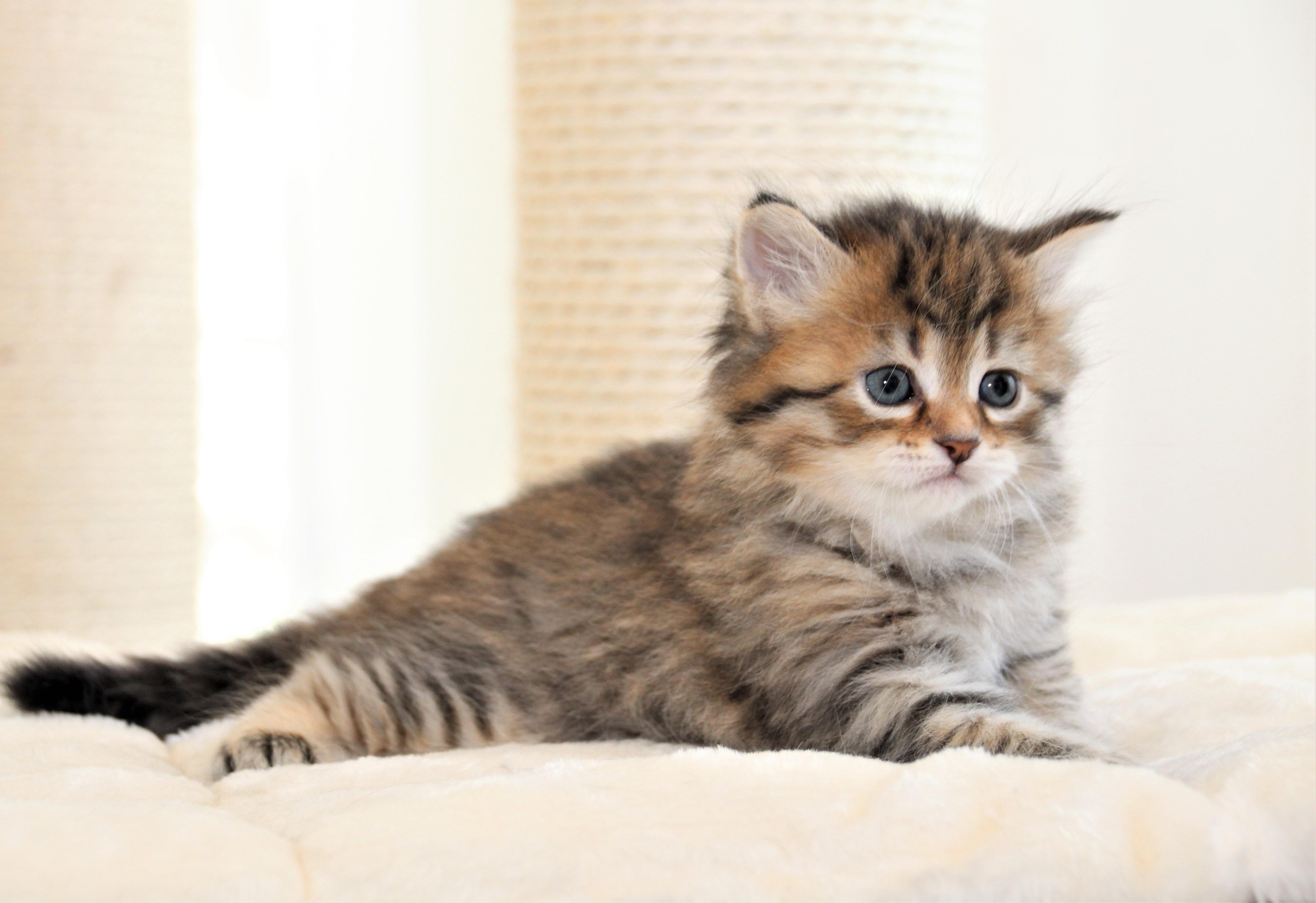 Fanny, 1 Monat alt